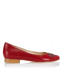 Kelly tejus red